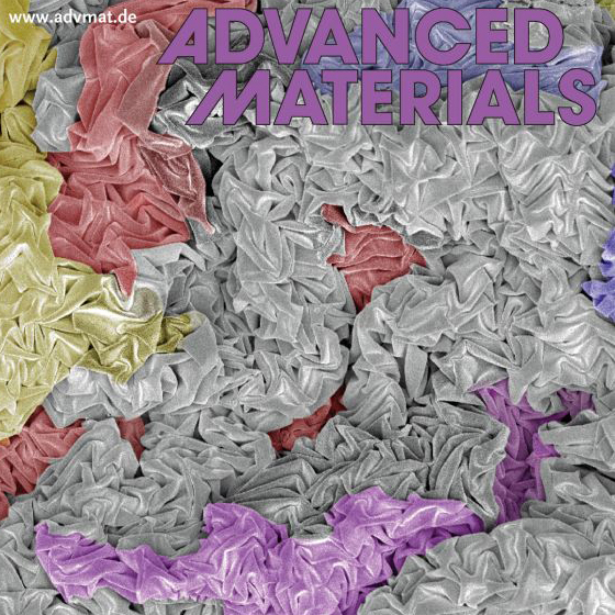 Ryan Hoshi, <em>Advanced Materials</em>, 2009 Cover