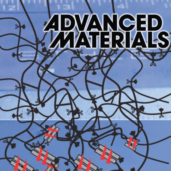 Conchi Serrano, <em>Advanced Materials</em>, 2011 Cover