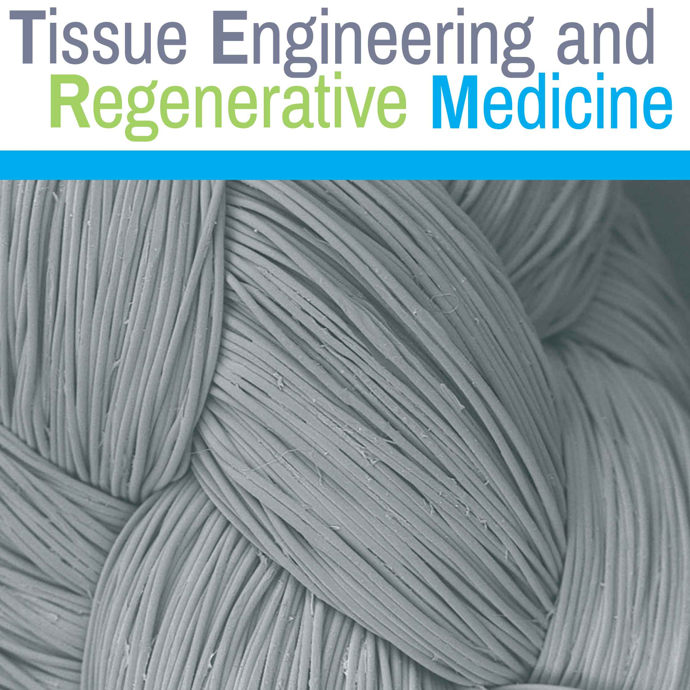 Eunji Chung, Journal of Tissue Engineering and Regenerative Medicine, 2017 Cover